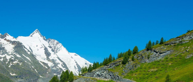 Grossglockner Gletscherstrasse2 grossglockner web